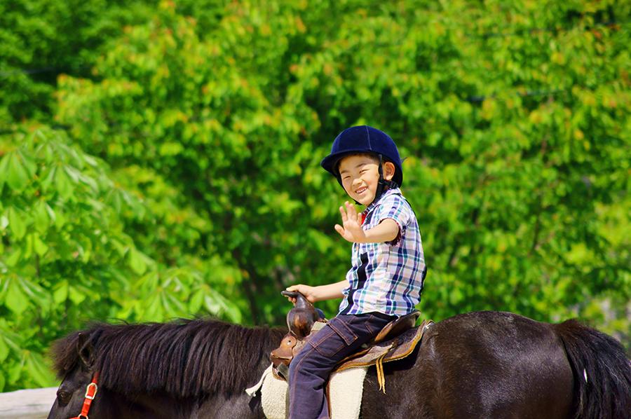 horseback riding manchester vt