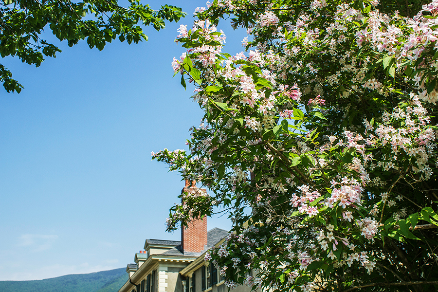 Hildene in Bloom