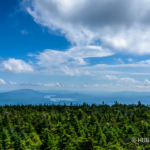 from-stratton-fire-tower