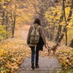 girl-and-dog-on-walk-in-beautiful-autumn-nature-park-young-female-person-and-her-pet-staffordshire-terrier-take-a-walk-in-the-forest-and-enjoy-beautiful-october-nature-and-yellow-tree-leaves