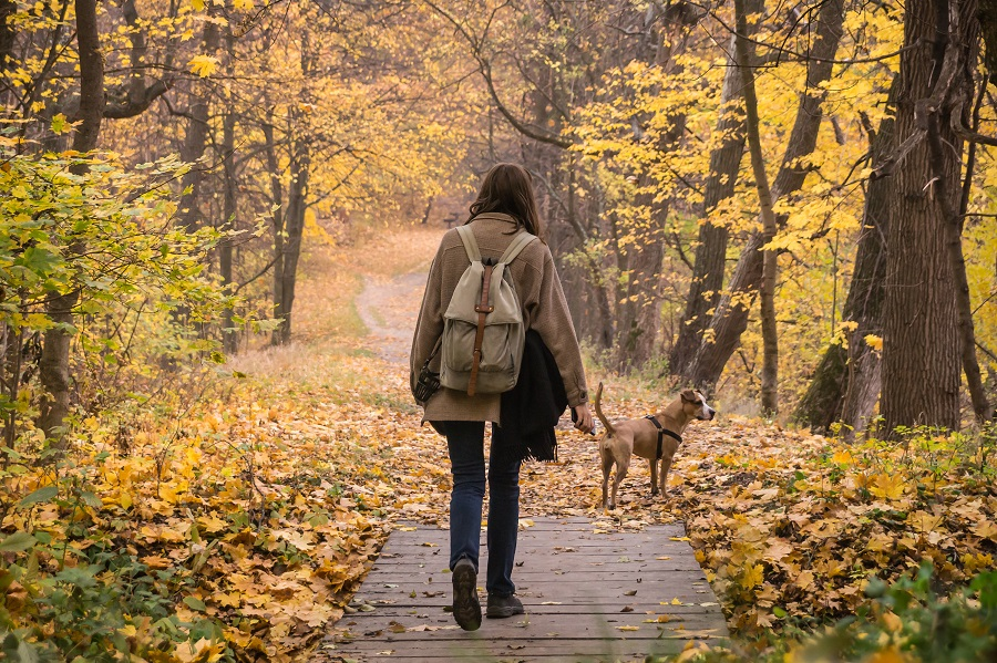 girl walking her dog in forest in fall
